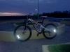 31.03| Até no escuro a danada brilha !