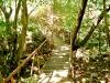 a-ponte-do-rio-que-n%c3%a3o-cai