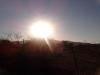 Nascer do Sol, lindo, enquanto cedo.